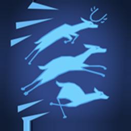 Spirit of the Deer